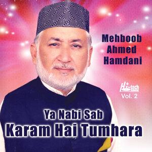 Nabi Nabi Sab Pukarte Hain Vol. 2 - Islamic Naats