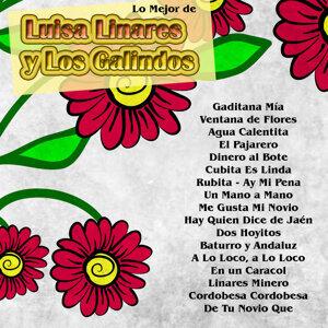 Lo Mejor De: Luisa Linares y los Galindos