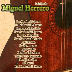 Lo Mejor De: Miguel Herrero