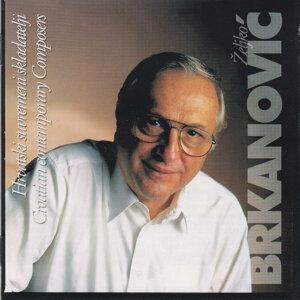 Zeljko Brkanovic