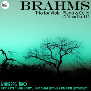 Brahms: Trio for Viola, Piano & Cello in A Minor Op. 114