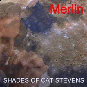 Shades of Cat Stevens