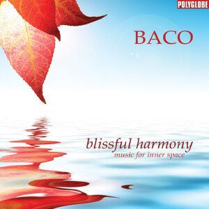 Blissful Harmony