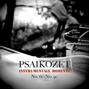 Instrumentale Momente No. 61 - No. 90 - Teilaufnahmen