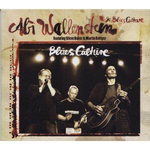 Blues Culture [feat. Steve Baker & Martin Röttger]