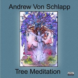 Tree Meditation