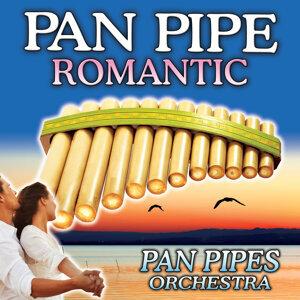 Pan Pipe Romantic