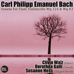 Bach: Sonata for Flute Violincello Wq 124 & Wq 83