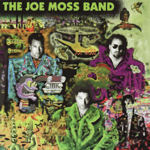 The Joe Moss Band