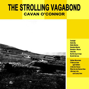 The Strolling Vagabond