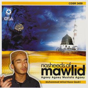 Nasheeds of Mawlid