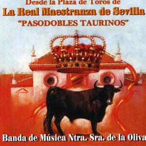 Pasodobles Taurinos. Plaza de Toros la Real Maestranza de Sevilla
