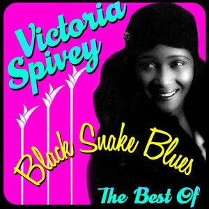 Black Snake Blues - The Best Of