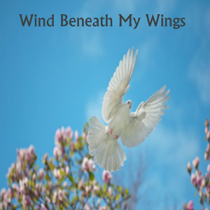 Wind Beneath My Wings: Instrumental Religious Music