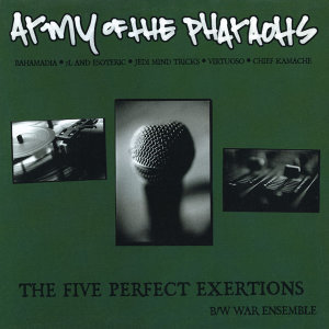 "The Five Perfect Exertions (12"")"