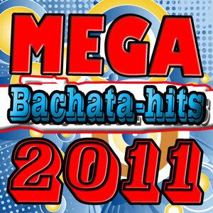 Bachata HitMix 2011