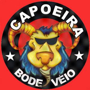 Capoeira Brasileira by Bode Veio