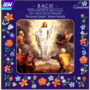 Bach: The 6 Motets, BWV 225-30; Jesu, Meine Freude (Fantasia)