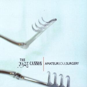 Amateur Soul Surgery