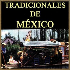 Vintage Mexico: Tradicionales De México