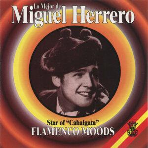 Lo Mejor De Miguel Herrero