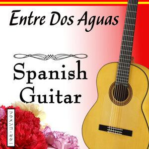Entre Dos Aguas With Spanish Guitar