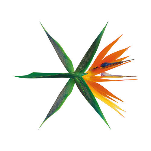 THE WAR - The 4th Album - Korean Version