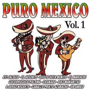 Puro Mexico Vol. 1