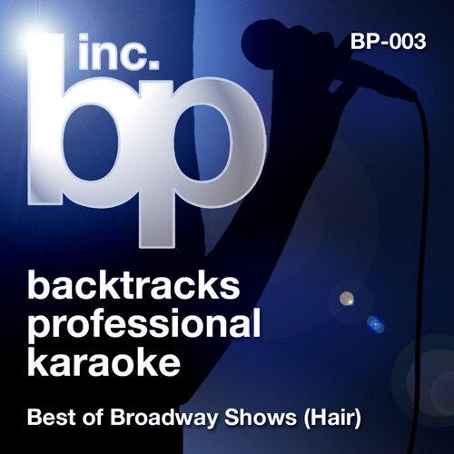 Let The Sunshine In (Karaoke Instrumental Track)[In the