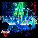 EDM FloorFillers Vol.12