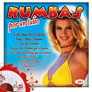 Rumbas Por Un Tubo Vol.1