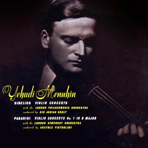 Sibelius Violin Concerto / Paganini Violin Concerto