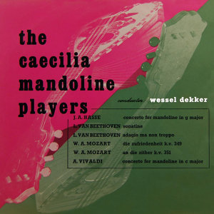 Concerto For Mandoline In G Major