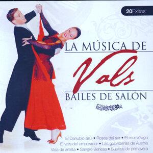 Bailes de Salón Vals  (Ballroom Dance Vals)