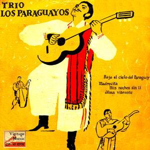 """Vintage World Nº 31 - EPs Collectors """"Bajo El Cielo De Paraguay"""""""