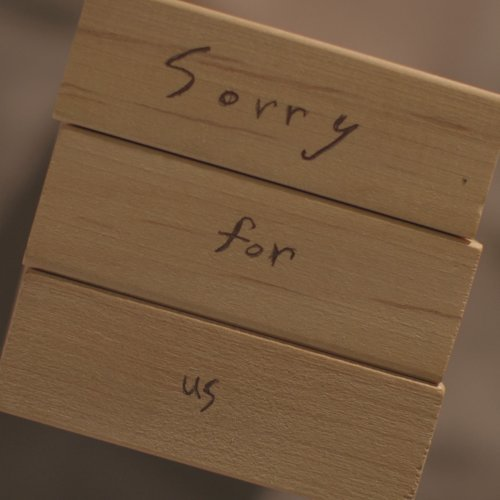Sorry For Us