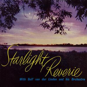 Starlight Reverie