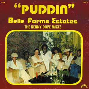 Puddin' - Single