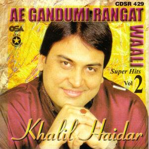 Ae Gandumi Rangat Waali - Super Hits Vol 2