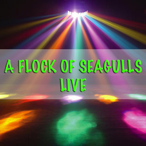 A Flock Of Seagulls - Live