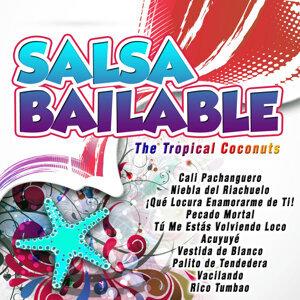Salsa Bailable