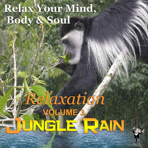 Jungle Rain: Relaxation, Vol. 3