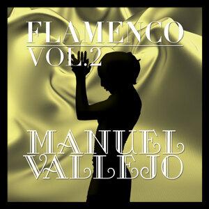 Flamenco: Manuel Vallejo Vol.2