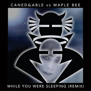 While You Were Sleeping Remix