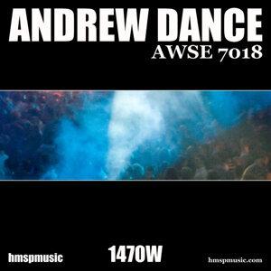 Awse 7018