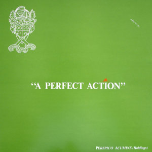 A Perfect Action (English Cricket)