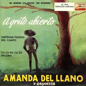 """Vintage México Nº 92 - EPs Collectors """"El Alegre Ranchero"""" """"A Grito Abierto"""""""