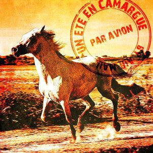 Un été en Camargue
