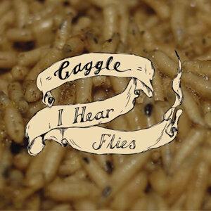 I Hear Flies