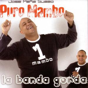 Puro Mambo